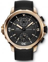 IWC » Aquatimer » Chronograph Charles Darvin Edition » IW379503