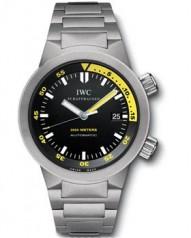 IWC » _Archive » Aquatimer Automatic 2000 42mm » IW353803