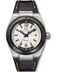 IWC » _Archive » Ingenieur Automatic Edition `Climate Action` » IW323402
