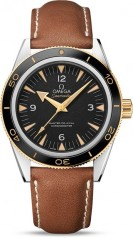 Omega » Seamaster » 300 Master Co-Axial 41 mm » 233.22.41.21.01.001