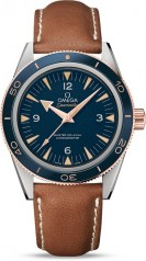 Omega » Seamaster » 300 Master Co-Axial 41 mm » 233.62.41.21.03.001