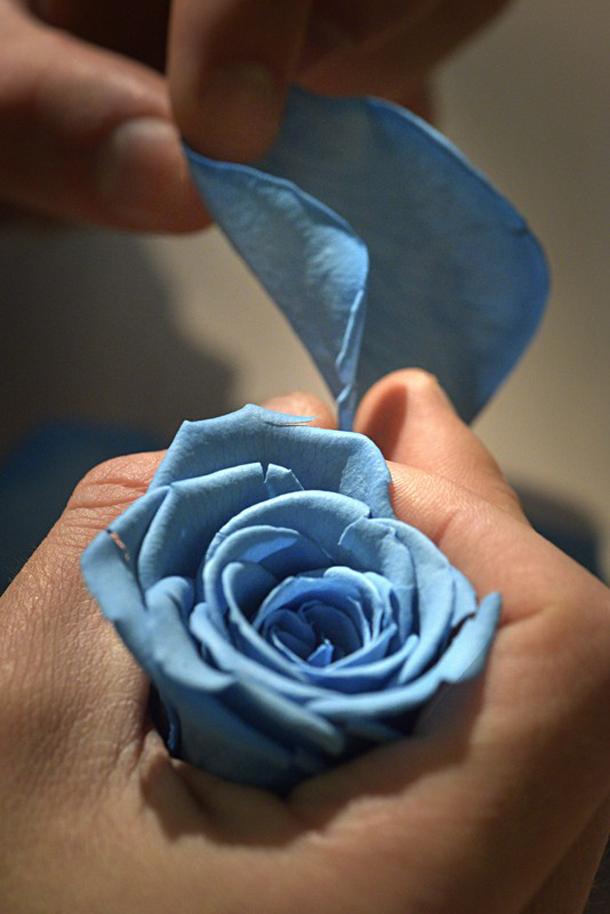 Ballon-Bleu-de-Cartier--8